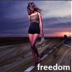 Freedom 4V
