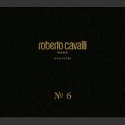 Roberto Cavalli №6