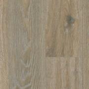 Venn Oak